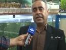 نجف آباد دومین تولیدکننده ماهی زینتی استان اصفهان